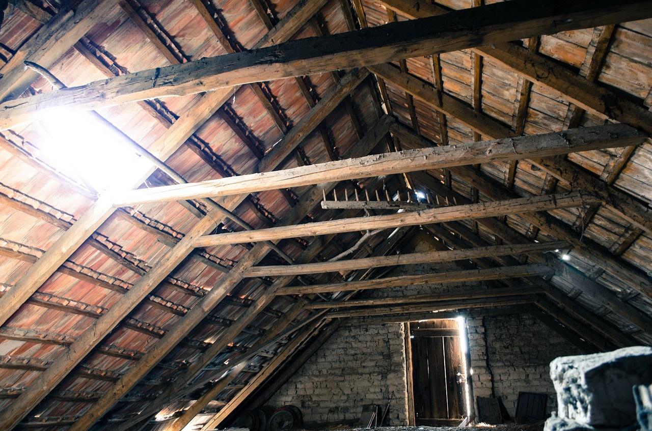 糞害に憤慨 !! 屋根裏に潜む住まいの害獣 「フン」の脅威度ランキング